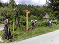 ZVN Natura 2000